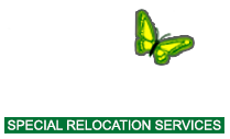 Gentle Transitions Move Management Services